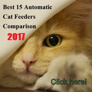 petkit feeder manual