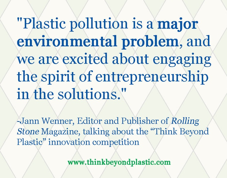 plastic pollution project pdf