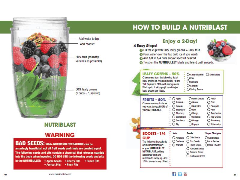 nutribullet instruction booklet