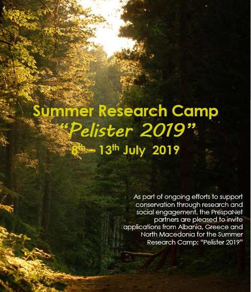 summer research application
