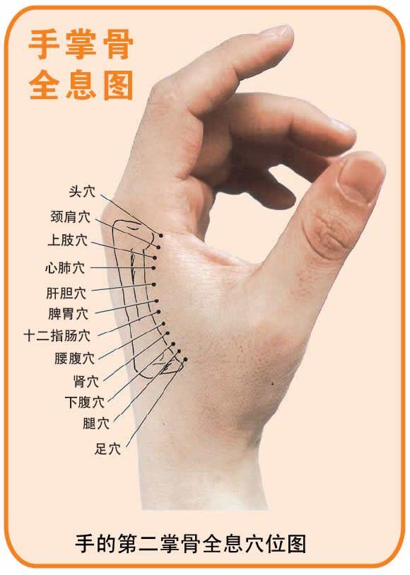 mastering tung acupuncture pdf